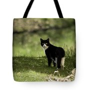 Lilly Tote Bag by Trish Tritz