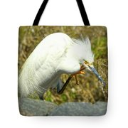 Lillywhite Tote Bag