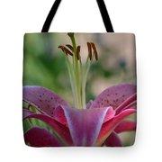 Lily 4 Tote Bag
