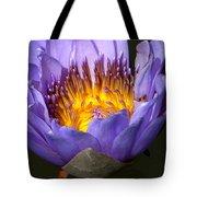 Lily Aglow Tote Bag