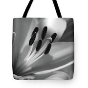 Lily - American Cheerleader 03 - Bw - Water Paper Tote Bag