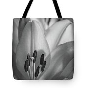 Lily - American Cheerleader 07 - Bw - Water Paper Tote Bag