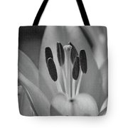 Lily - American Cheerleader 11 - Bw - Water Paper Tote Bag