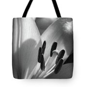 Lily - American Cheerleader 14 - Bw - Water Paper Tote Bag