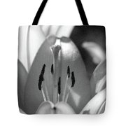 Lily - American Cheerleader 18 - Bw - Water Paper Tote Bag