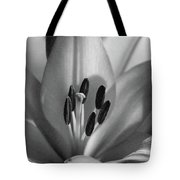 Lily - American Cheerleader 37 - Bw - Water Paper Tote Bag