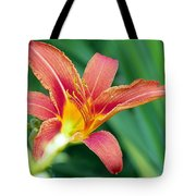 Lily And Glowing Light Tote Bag