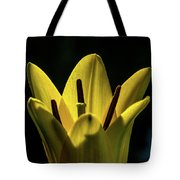 Lily And Sunshine Tote Bag