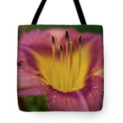 Lily Bloom Close Up Tote Bag