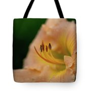 Lily Bloom Profile Tote Bag