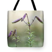 Lily Buds Tote Bag
