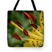 Lily Center Tote Bag by William Selander