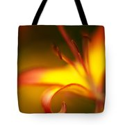 Lily Curls Tote Bag