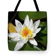 Lily Floating On Pond IIi Tote Bag