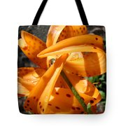 Lily Flower Art Prints Tiger Lilies Giclee Baslee Troutman Tote Bag