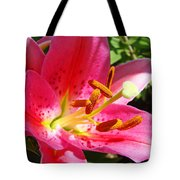 Lily Flower Pink Lilies Giclee Art Prints Baslee Troutman Tote Bag
