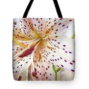 Lily Flower White Lilies Art Prints Baslee Troutman Tote Bag