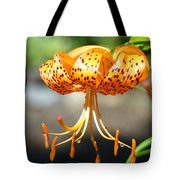 Lily Flowers Art Orange Tiger Lilies Giclee Baslee Troutman Tote Bag