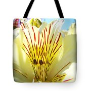 Lily Flowers Art Prints Yellow Lillies 2 Giclee Prints Baslee Troutman Tote Bag