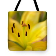 Lily In Close-up Tote Bag
