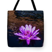 Lily In Pond Tote Bag