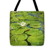 Lily Pad Flowers Tote Bag