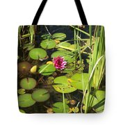 Lily Pad Pond In High Noon Sun Tote Bag