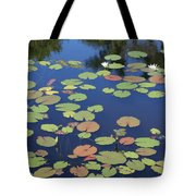 Lily Pads On Blue Pond Tote Bag