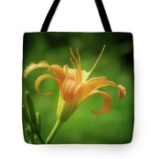 Lily Picture - Daylily Tote Bag