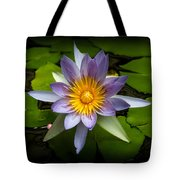 Lily Queen Of The Pond  Tote Bag