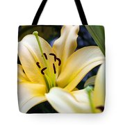 Lily Splendor Tote Bag