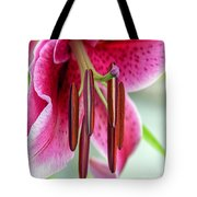 Lily Wishes Tote Bag