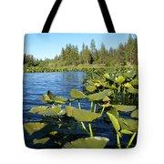 Lilypads On Amber Lake Tote Bag