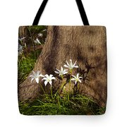 Lily's Atamasco Tote Bag
