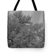 Limb Lace Tote Bag