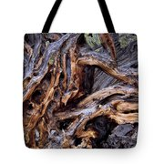 Limber Pine Roots Tote Bag
