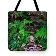 Limberlost Tote Bag