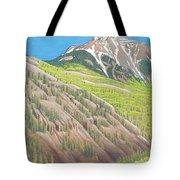Lime Creek Canyon Tote Bag