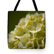Lime Hydrangea Tote Bag