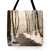 Limentra In Winter Tote Bag