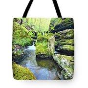 Limestone Waters Tote Bag