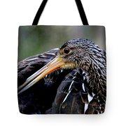Limpkin Tote Bag
