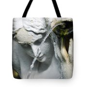 Lincoln Park Conservatory Fountain Tote Bag