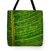 Lincoln Park Conservatory Palm Tote Bag