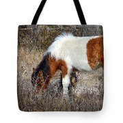 Linda Rae's Autumn Glory N2bhs-ap Tote Bag by Assateague Pony Photography