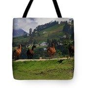 Line-dancing Llamas At Ingapirca Tote Bag