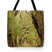 Line Of Oak Trees To Distance Tote Bag