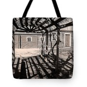 Linear View Tote Bag