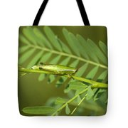 Linear Winged Grasshopper Tote Bag