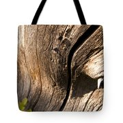Lines Of Nature Tote Bag